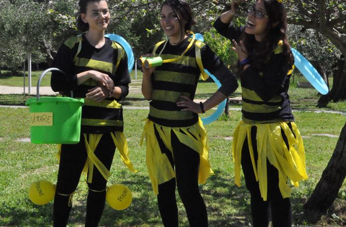 Percorsi didattici sulle api