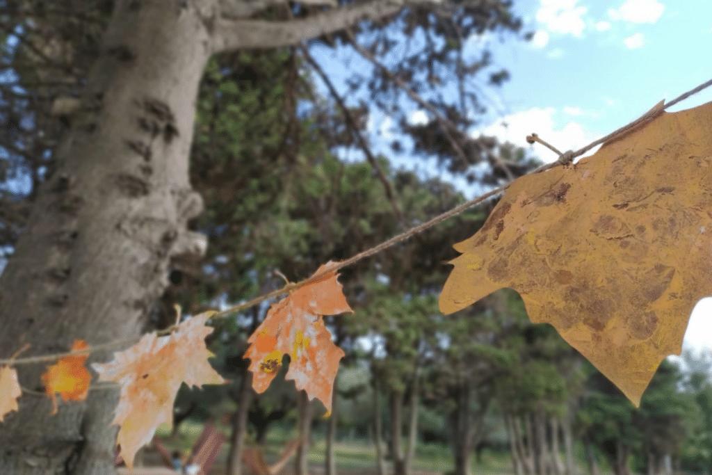 autunno fattoria riparo